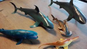haaienfeest (11)