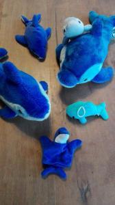 haaienfeest (14)
