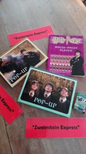 Harry Potter feest (11)
