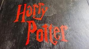 Harry Potter feest (14)