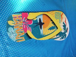 hawaiifeest (10)